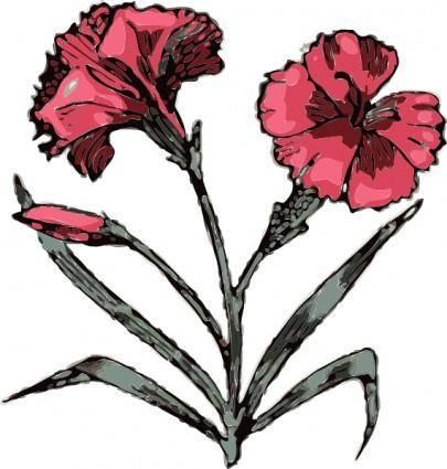 Carnation Flower clip art