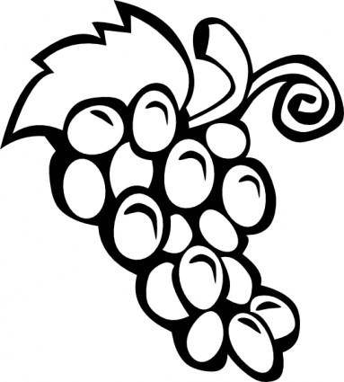 free vector Grape Vine clip art