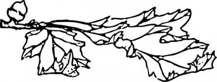 Acorn And Leaf clip art