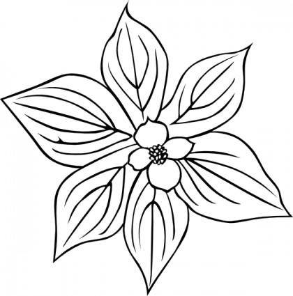 Gg Cornus Canadensis Outline clip art
