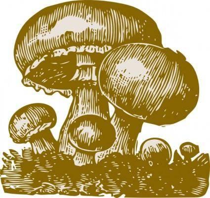 free vector Mushrooms clip art