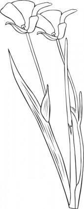 free vector Plant Flower Outline clip art