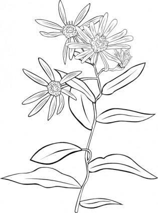 free vector Plant Flowers Shrub clip art