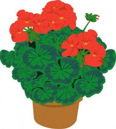 Geranium In Pot clip art