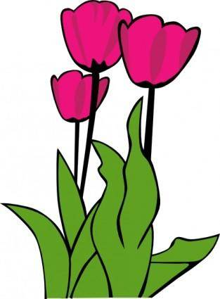 Tulips In Bloom clip art
