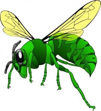 Green Hornet clip art