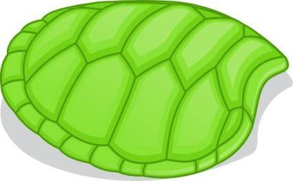 free vector Valessiobrito Hoof Of Green Turtle clip art