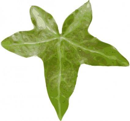 Plant Leaf clip art
