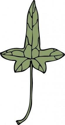 Ivy Leaf clip art