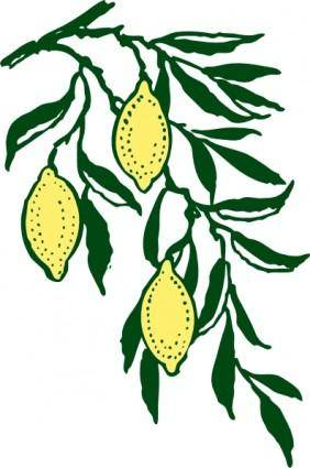 Lemon Branch clip art