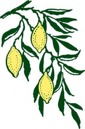 free vector Lemon Branch clip art