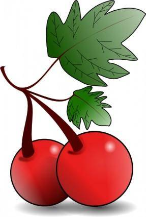 free vector Cherries Fruit clip art