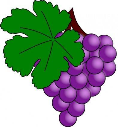Grape With Vine Leaf clip art