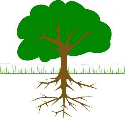 Tree Branches And Roots clip art