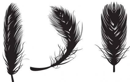 free vector Feather Vectors