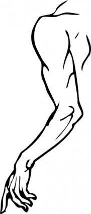 Left Arm clip art