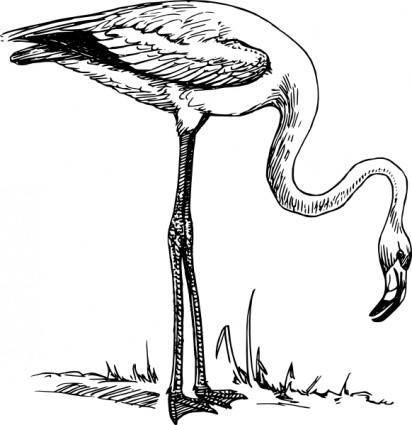 free vector Flamingo clip art