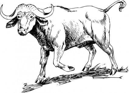 free vector Buffalo clip art