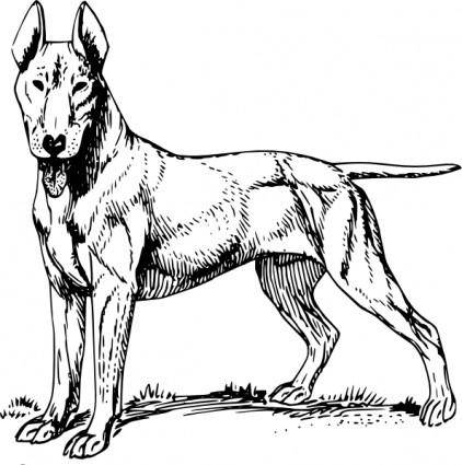 free vector Bull Terrier clip art