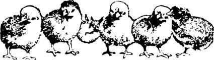 free vector Chicks clip art