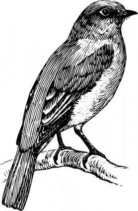 free vector Bluebird clip art