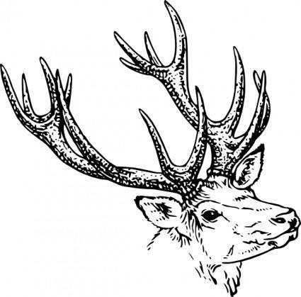 Stag Head clip art