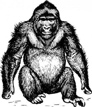 free vector Ape clip art