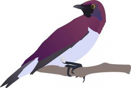 free vector Exotical Bird clip art