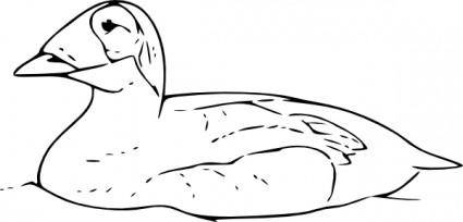 free vector Duck Swimming clip art
