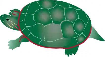 Painted Turtle clip art