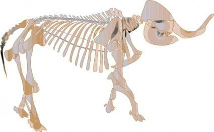 Mastodon Fossil clip art
