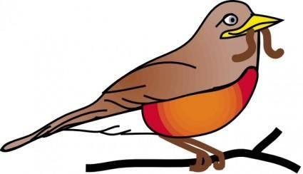 Amercan Robin clip art