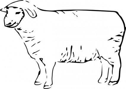 free vector Single Sheep clip art