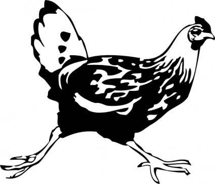 Running Chicken clip art
