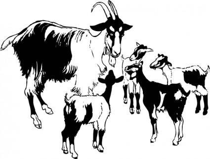 Goat And Kids clip art