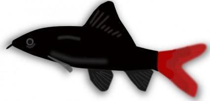 free vector Aquarium Fish Silhouette clip art