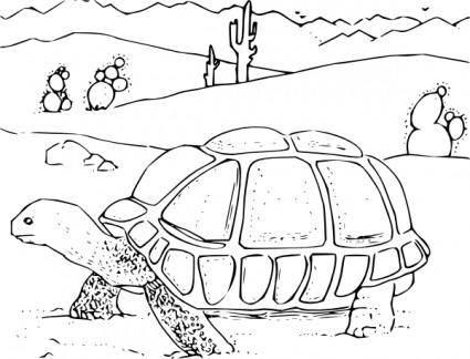 free vector Coloring Book Desert Tortoise clip art