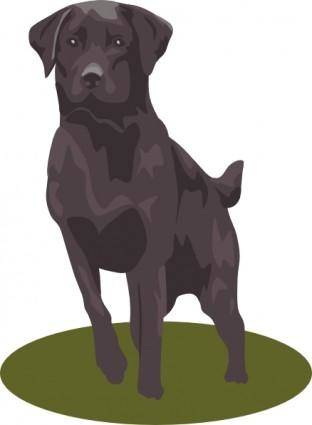 free vector Black Lab clip art