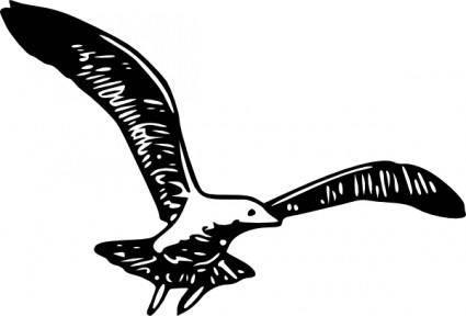Herring Gull B clip art