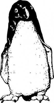 Funky Penguin From Front clip art