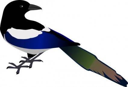 free vector Magpie clip art