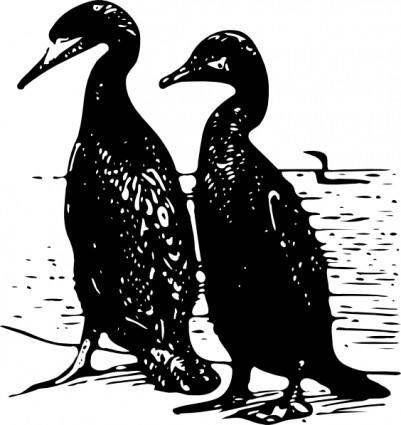 free vector Walking Ducks Birds clip art