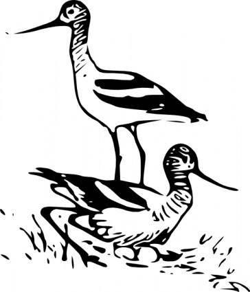 free vector Birds Animals Walking Running clip art