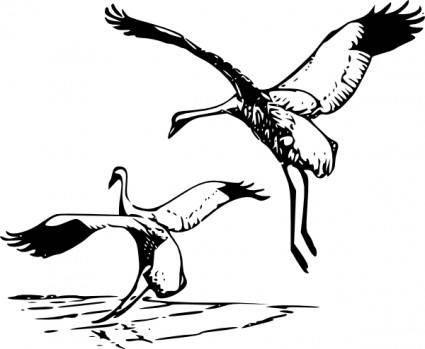 free vector Whooping Crane clip art
