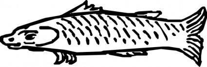 Fish 2 clip art