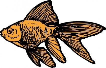 Goldfish clip art