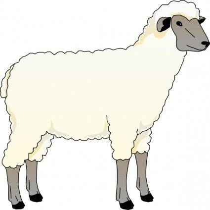 free vector Sheep Ewe clip art