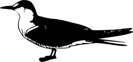 free vector Bird Animal Standing clip art