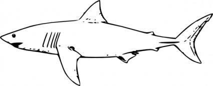 free vector White Shark clip art