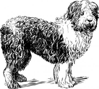 Sheep Dog clip art